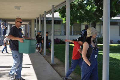 Goshen School Garden - Robin 2056