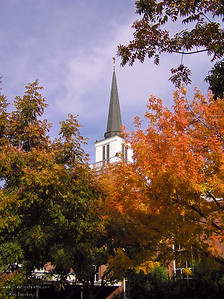 Steeple taken from courtyard of First Presbyterian Church - Visalia, CA.  Fall color of Chinese Pistache trees.