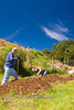 Guatemala Mission Trip - Day 4 - Monday, November 12, 2007<br /> Digging the ditch for the water pipes was strenuous work at high altitude.