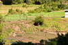Guatemala Mission Trip - Day 8 - Friday, November 16, 2007 <br /> Snapshots of the life of farming.  There is essentially no flat land and nearly all farming is done entirely by hand.  No tractors or automation.  Even see women throwing water from a creek by hand to water the crops.