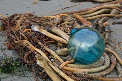 Glass_Balls2013-12-27©Craig_Tooley_CT68791
