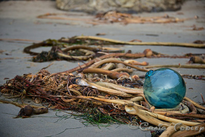 Glass_Balls2013-12-27©Craig_Tooley_CT68798