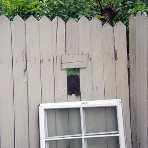 The hole in the fence for passing contraband doggie biscuits.