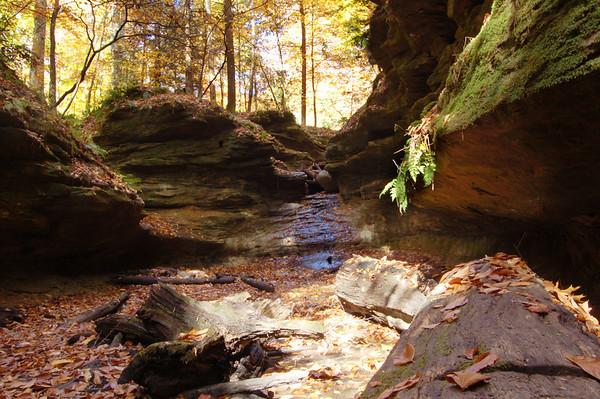 Turkey Run State Park<br /> Crawfordsville, Indiana<br /> October, 2009