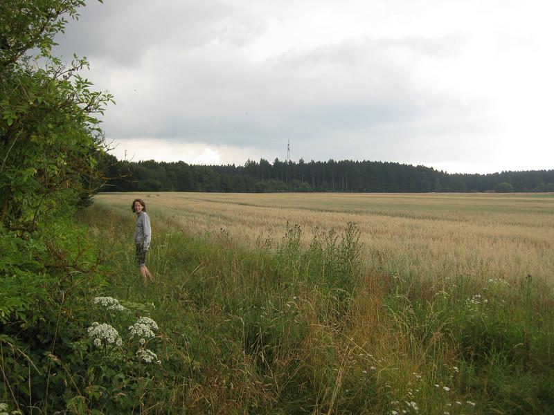 Gauting to Starnberg