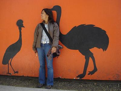 Birds..., Tracy Aviary