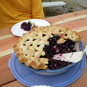 Fresh blueberry pie.