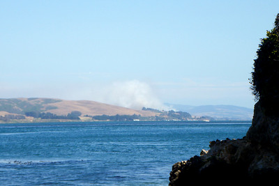 Looking south down Tomales Bay, a wildfire has erupted.  It was under control quickly, and scorched probably less than an acre.