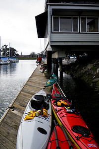 Kayaks on the dock of Quinn's Lighthouse.  After a moment of surprise, they welcomed us, fed us, hydrated us (turned their heads as we brought out chocolate treats), and let us toss peanut shells all over their floor.