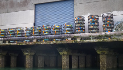 Idle crab pots, waiting for price negotiations.
