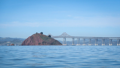 Red Rock, the Richmond-San Rafael Bridge (aka the John McCarthy Memorial Bridge), built in 1956.  It's got it's weird shape because they built both spans identically to save on fabrication... it results in that weird camel-hump shape.