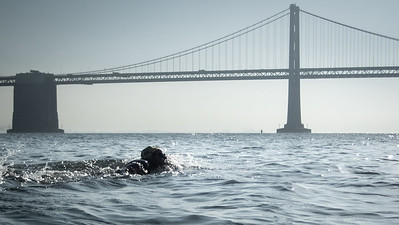 Finally, the Bay Bridge!