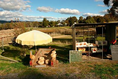 Bronwyn's stall, Lyndhurst 2006