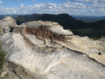 Blue Mountains carving, 2008