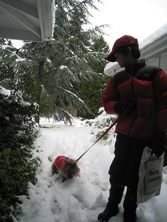 Snowy 2008