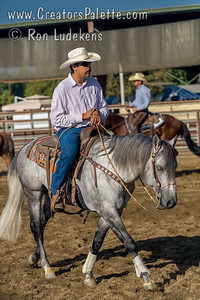 """Image taken at Whitneys Wild Oak Ranch which was hosting """"Cow Horse for a Cure"""" a competition/show by Valley Cow Horse Association and National Reined Cow Horse Association.  Proceeds went to St Jude Hospital."""