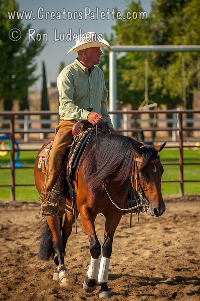 "Image taken at Whitneys Wild Oak Ranch which was hosting ""Cow Horse for a Cure"" a competition/show by Valley Cow Horse Association and National Reined Cow Horse Association.  Proceeds went to St Jude Hospital."