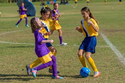 AYSO Soccer Playoffs 2016