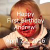 Andrew's First Birthday