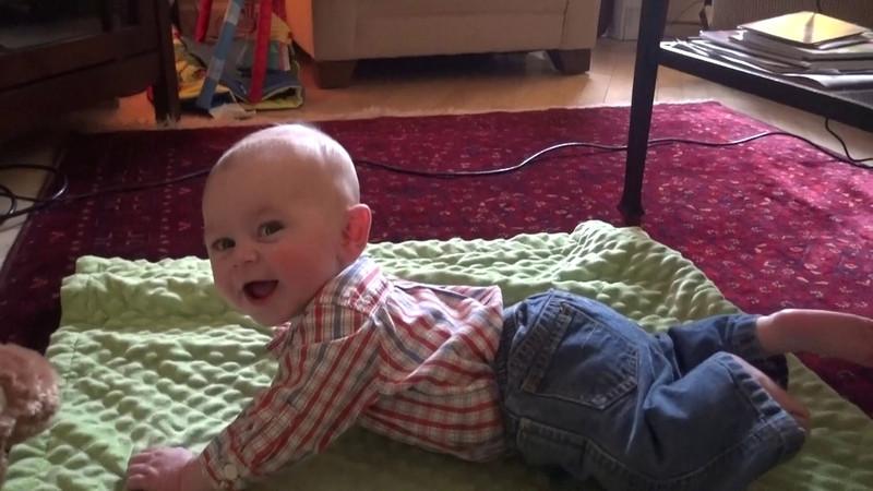 Daniel 4 1/2 Months