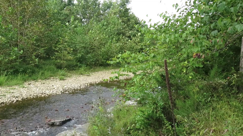 River Improvement Project