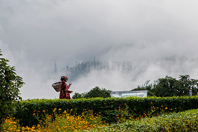 C22:Dressing up in local costume is a must for tourists visiting Batasia Loop in Ghum,Darjeeling,West Bengal