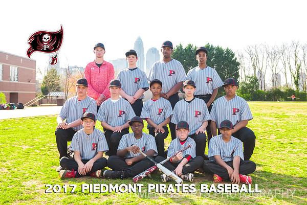 13-Piedmont-Baseball-Team-2017