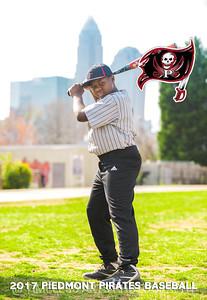 4-Piedmont-Baseball-2017-Christian-Nettles
