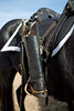 Riding boots are reversed in the stirrups of a caparisoned or riderless horse as part of the ceremony to honor Albert M. Robertson.