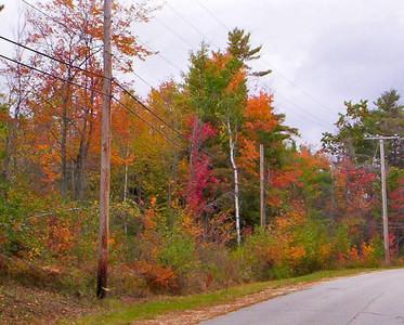 Otterville Road, 2