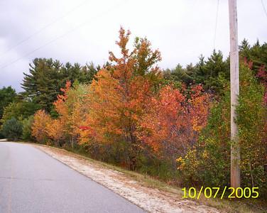 Otterville Road, 1