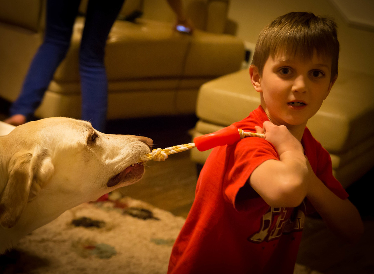 """Noah & Dudley """"Guess who wins""""?<br /> <br /> iso 6400"""