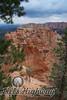 Bryce Canyon National Park VI