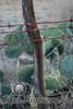 Fencepost II