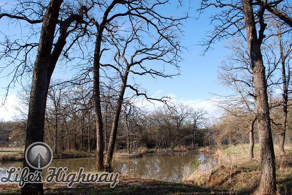 The Pond I<br /> Color