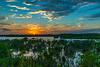 Mangroves break the sunset reflection