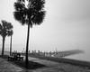 Foggy morning at Navarre Beach
