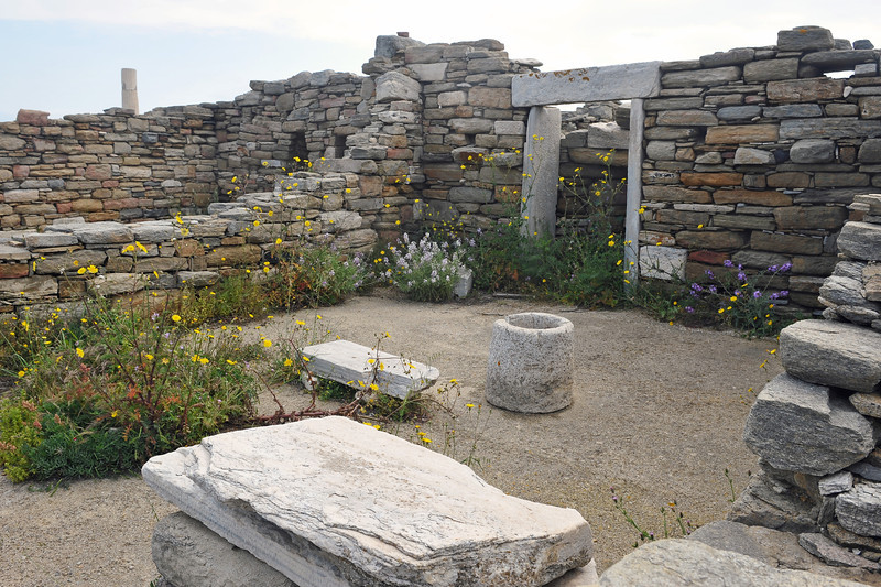 Spring flowers at the sanctuary of Delos island, Greece