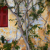Wall of house in the old neighborhood of Anafiotika in Athens, Greece