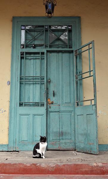 Guarding an old home in the Barranco neighborhood of Lima, Peru