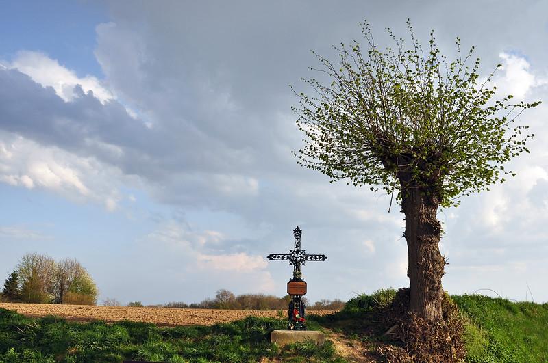 Rural cross in Limburg, The Netherlands