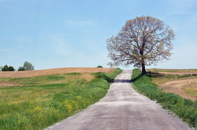 Rural road in Pennsylvania, USA