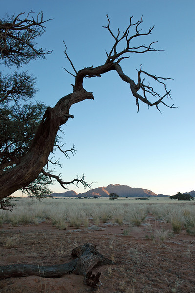 Cold early morning in central Namibia