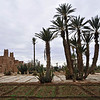 Historical kasbah surrounded by cultivated fields near Ouazarzate, Morocco