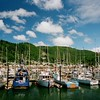 Garibaldi Harbor.