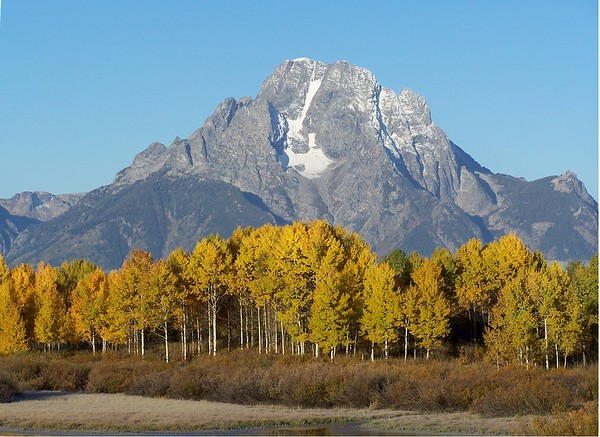 Mt. Moran at Oxbow Bend in Grand Teton National Park