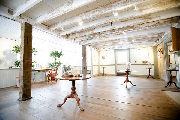 Anastasia Traina exhibit at Berkshire Botanical Gardens-011118