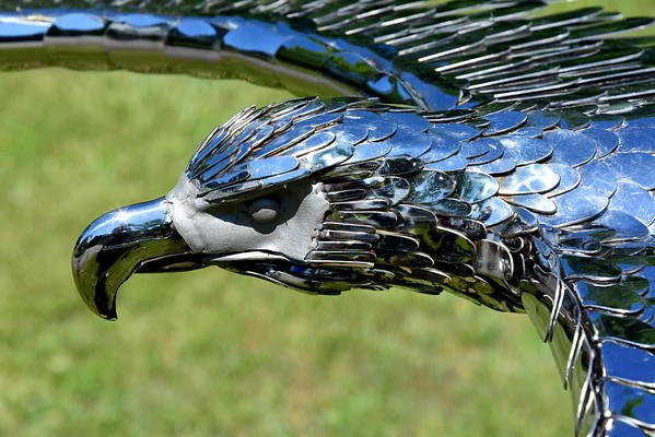 Artist Gary Czarnecki fabricates stainless steel eagles - 062618