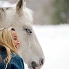 BEN GARVER — THE BERKSHIRE EAGLE<br /> Hayley Sumner cares for her horses at Berkshire horseworks in Richmond. Sumner is recovering from an ankle injury but is able to get out and check on her horses and donkeys. Sumner usees the animals for therapy.THe horse in this photo is named Zephyr.