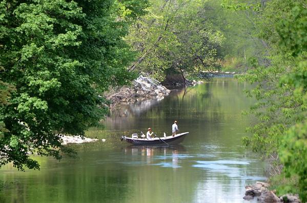 Nature-Hoosic-River-051415